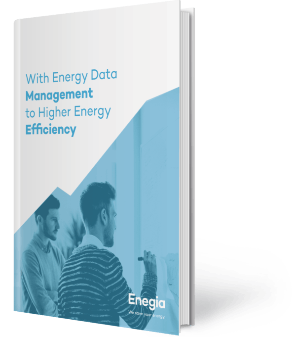 With Energy Data Management to Higher Energy Efficiency