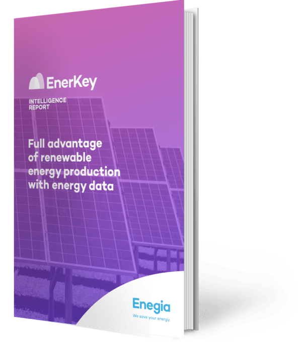 EnerKey Intelligence Report: Maximum benefits from renewable energy production with energy data guide